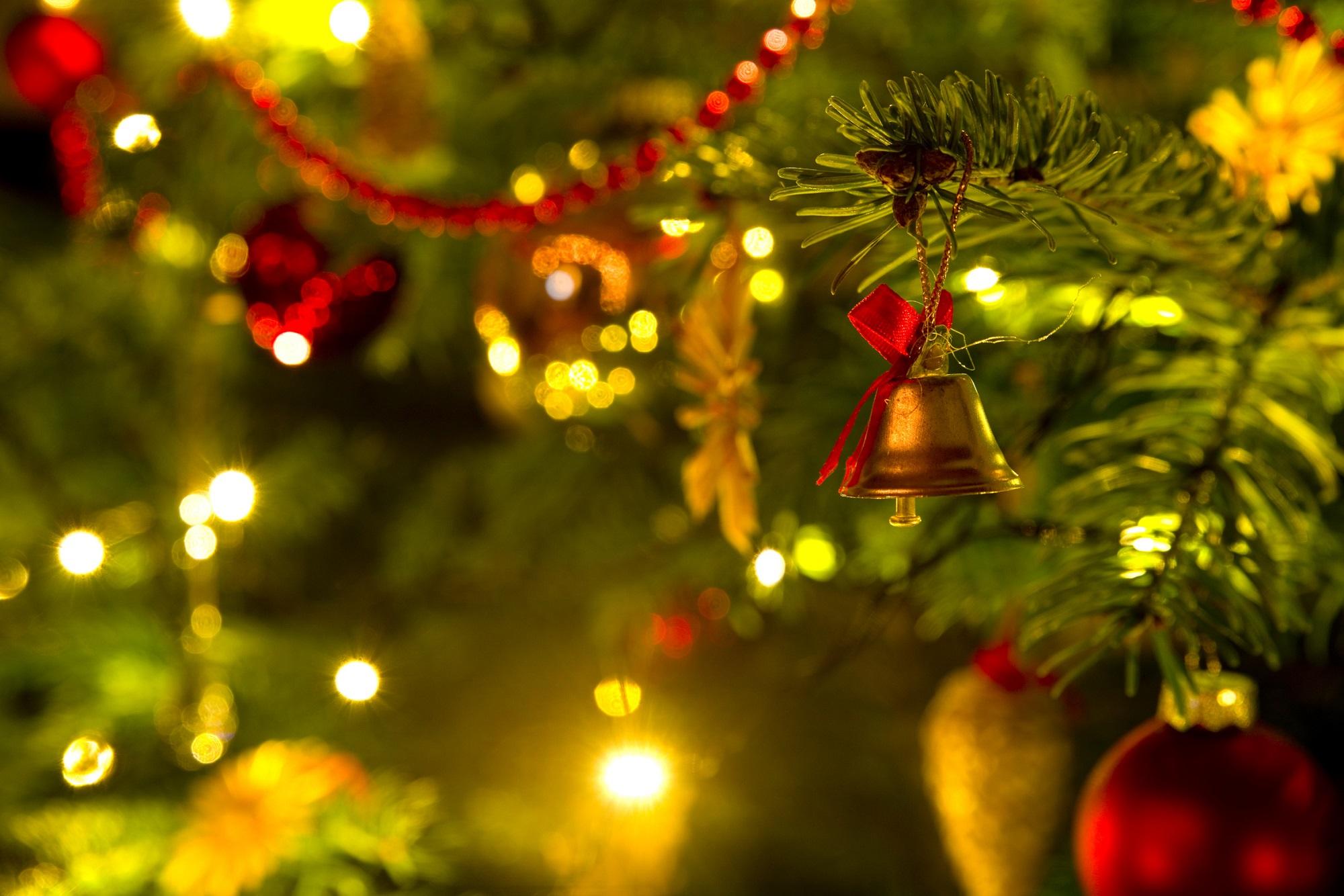 advent advent so viele steuers tze hat der weihnachtsbaum. Black Bedroom Furniture Sets. Home Design Ideas